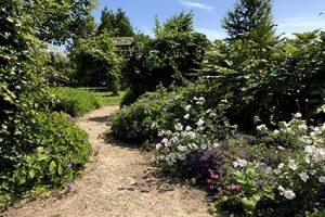 Duurzame en natuurlijke tuin met inheemse beplanten