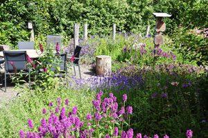 Natuur ondersteunende bloemen tuin